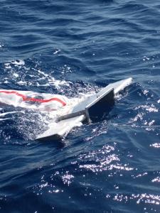 Manny the Manta Trawl
